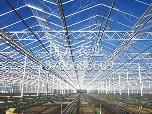 文洛式玻璃连栋智能温室