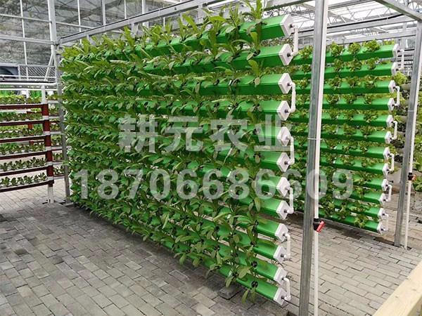 应用无土栽培设备的投入