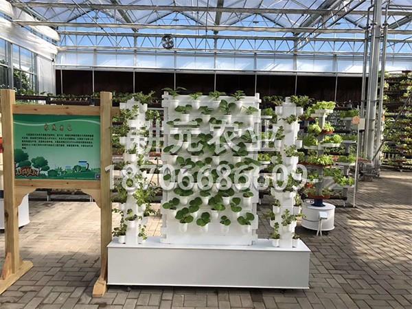 无土栽培设备该如何选择?